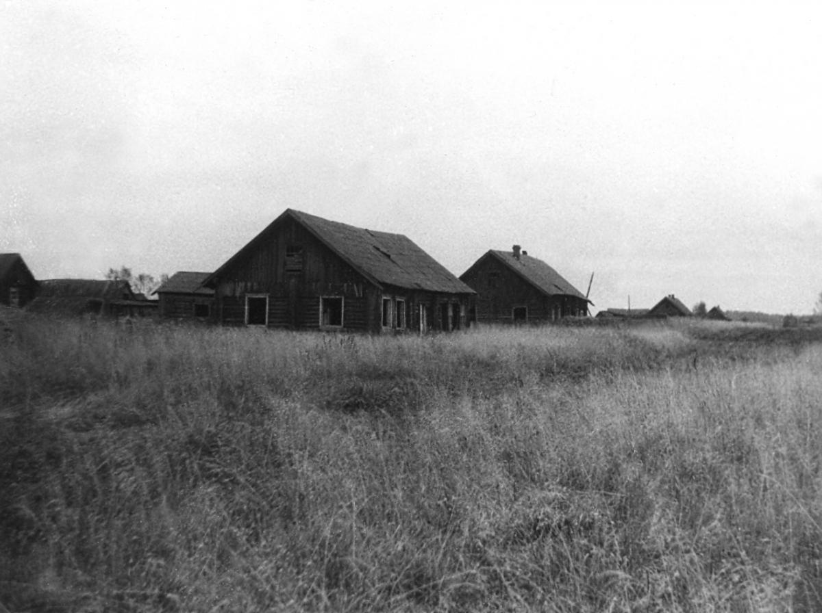 архивные фото деревни дизьмино что-то пойдет так