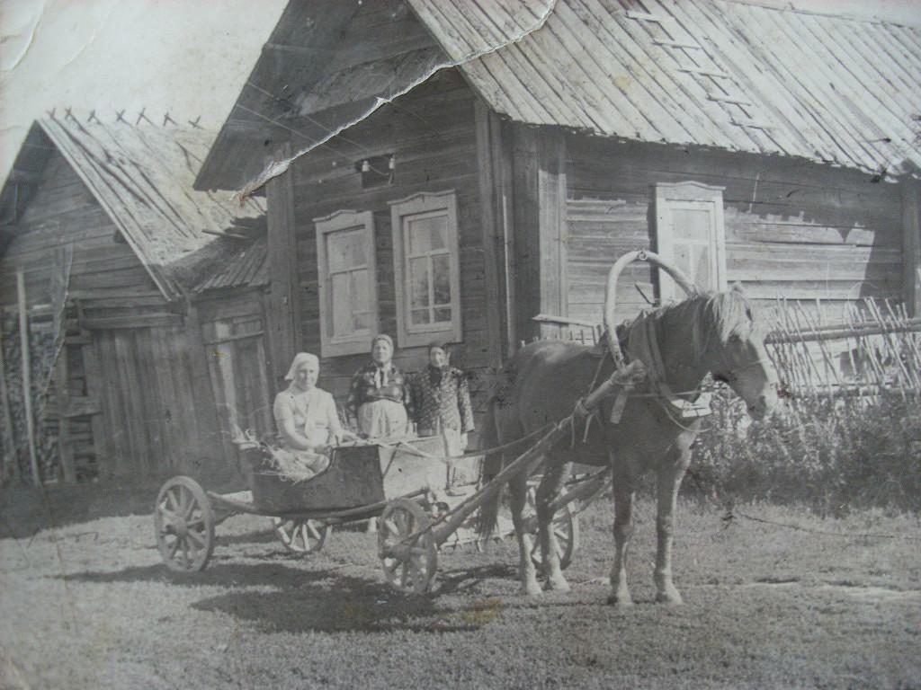 тиффани техника старинные фото пижанская волость яранский уезд что парящая