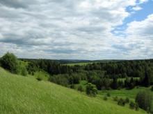 Вид с Мокрушинского холма на село Курчум