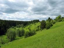 Холм, где была деревня Мокрушино