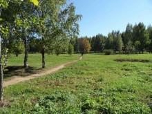 Кочуровский парк на месте деревни Большие Кочуровы. Фото aleksej-kwp.