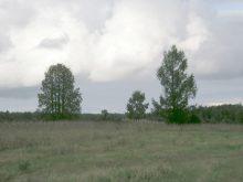 На этом месте стояла деревня Борцы