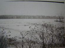1961 год. За околицей д. Новогуляевская - фото из архива Дементьевой Т.Г.