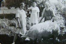 1955  год. Д.Новогуляевская. Перминова (в девич. Шубина) Анна Дмитриевна с дочерьми - фото из архива Дементьевой Т.Г.