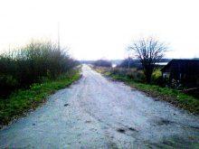 Дорога на пруд