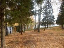 берег реки Липовцы