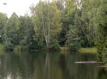 пруд Липовцы