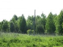 Юг деревни, столб ЛЭП. Фот. Лысов Д.С. 07.06.13