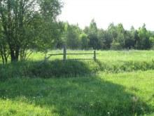 Юг деревни, забор. Фот. Лысов Д.С. 07.06.13