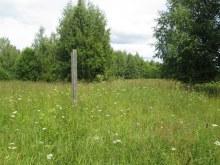 Деревянный столб, северная часть деревни, вид на север. Фот Лысов Д.С. 21.07.14
