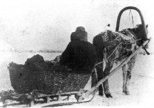 Подвозка руды по пруду. 1933 г.