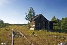 Железная дорога в районе В.Турунъю (фото с сайта www.vyatlag.ru)