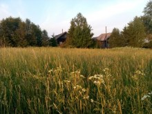 18.06.2016. Вот она деревня, вот он дом родной.