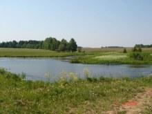 Пруд на речке Чернушке.