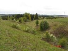 Окрестности бывшей деревни.