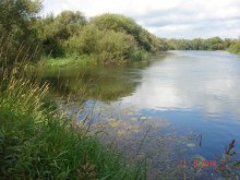 Добавила Т.Громозова.  Недалеко от д.Зоты есть живописное место, где р.Суна  впадает в р.Вою. Река Суна слева.