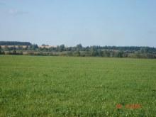 Вид д.Тараканы с правого берега р.Суна.