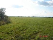 Луга около деревни.