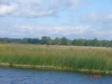 Добавила Т.Громозовой. Небольшое озерко около р.Вои, а вдали д.Зоты.