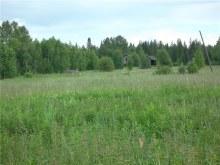 Фото - июнь 2012 г.
