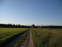 Дорога на Ковали из Полома (фото А.Мыльников)