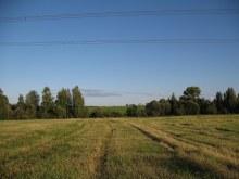 Вид из бывшего центра деревни на Полом (фото А.Мыльников)