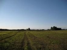 Вид на северо-запад (фото А.Мыльников)