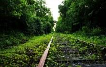 Килемарскя колея.Фото Чесноков С.
