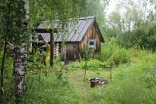 Приют. Фото Чеснаков С.