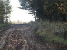 Дорога на бывшую д.Кошкили. На восток от церкви