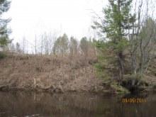 На этом берегу была д.Малая Колчаевка 2011 год.