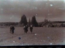 Конный двор, дорога в д.Егоренки в 1960-х г.