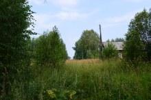 д.Робяши, июль 2016, крайний дом со стороны речки