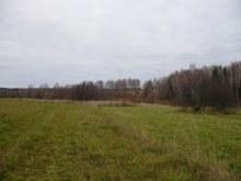 Улица исчезнувшей деревни Жуйково Вавожского района